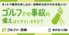 東京海上日動 eゴルファー保険